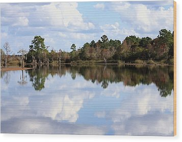From The Lake To The Channel  Wood Print by Debra Forand