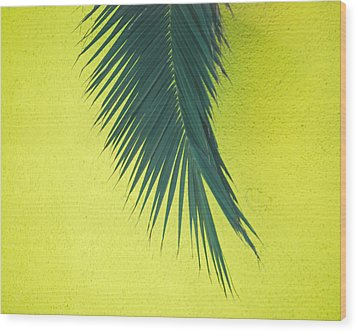 Wood Print featuring the photograph Frond by Maggy Marsh