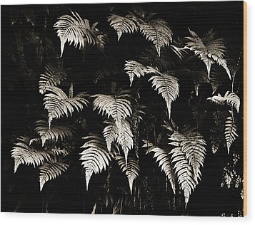 Fronds Wood Print by Marilyn Hunt