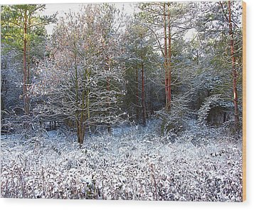Frost Bite Wood Print by Svetlana Sewell