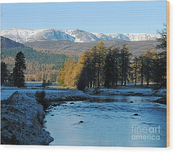 Frost In The Glen - Invercauld Wood Print