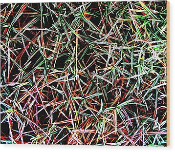 Frost On The Grass Wood Print