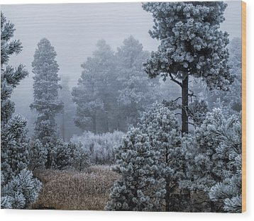 Frosted Wood Print by Alana Thrower
