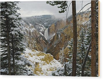 Wood Print featuring the photograph Frosted Canyon by Steve Stuller