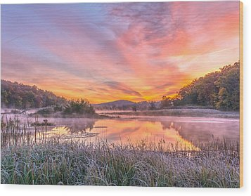 Frosted Dawn At The Wetlands Wood Print