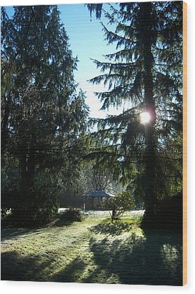 Frosted Gazebo Wood Print by Ken Day