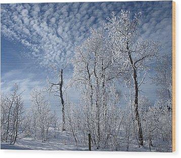 Frosted Hilltop Quakies Wood Print by DeeLon Merritt