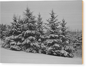 Wood Print featuring the photograph Frosted Trees by Kathleen Sartoris