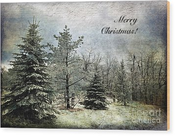Frosty Christmas Card Wood Print by Lois Bryan