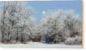Frosty Moon Trail Wood Print by John Hix