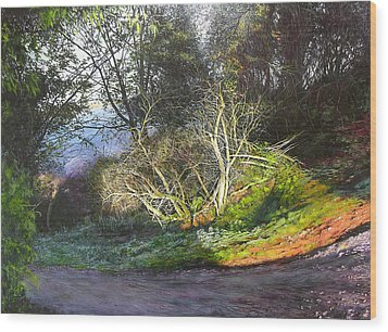 Wood Print featuring the painting Frosty Morning Near Nant Clwyd by Harry Robertson
