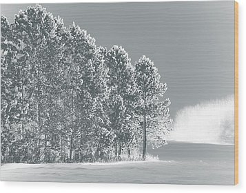 Wood Print featuring the photograph Frosty Morning by WB Johnston