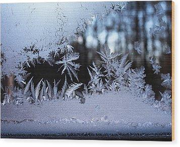 Frosty Morning Window Wood Print by Liz Allyn