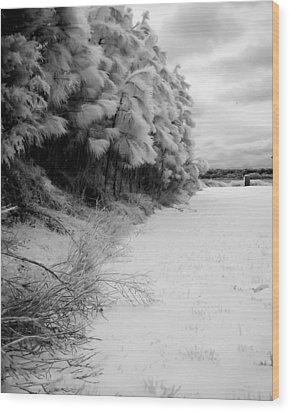 Frosty Treeline Wood Print