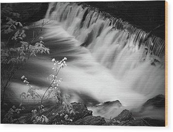 Frothy Falls Wood Print