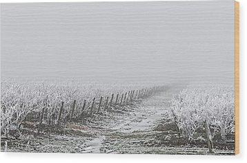 Frozen Blueberry Mist Wood Print
