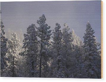 Wood Print featuring the photograph Frozen by Ellen Heaverlo