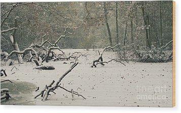 Frozen Fallen Wide Wood Print by Andy Smy