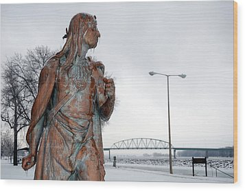 Frozen Glare Wood Print by Jame Hayes