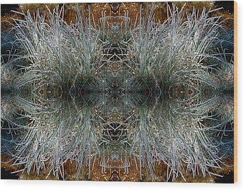 Frozen Grass Abstract Wood Print