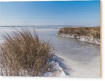 Frozen Marsh Wood Print