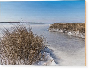 Frozen Marsh Wood Print by Gregg Southard