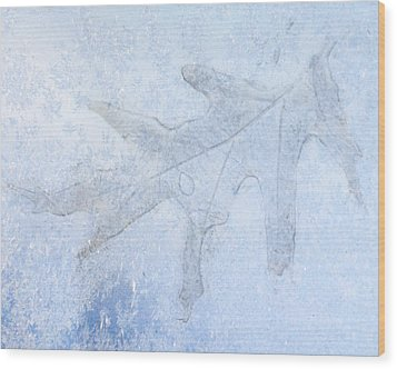 Frozen Oak Leaf Imprint Wood Print by Kathy M Krause