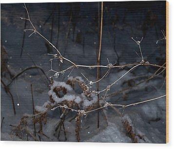 Frozen Rain Wood Print by Annette Berglund
