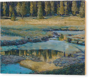 Frozen Reflections Wood Print by Billie Colson