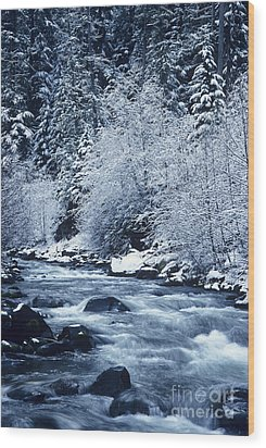 Frozen Salt Creek Wood Print by Greg Vaughn - Printscapes