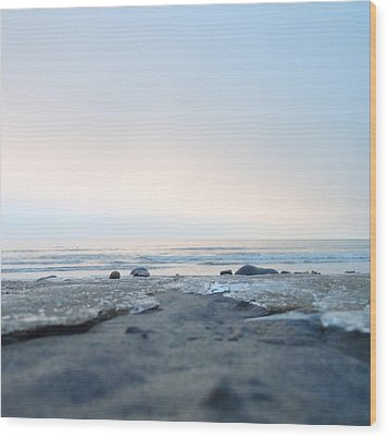 Wood Print featuring the photograph Frozen Sands by Mira Cooke