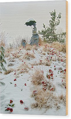 Frozen Viewpoint Wood Print by Timothy Hedges