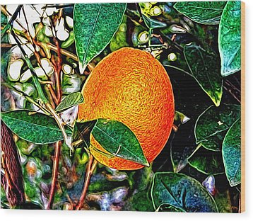 Wood Print featuring the photograph Fruit - The Orange by Glenn McCarthy Art