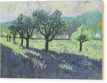 Fruit Trees, Spring Landscape Wood Print