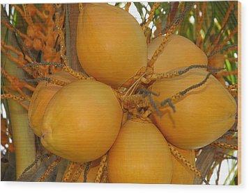 Fruitful Wood Print by Lori Mellen-Pagliaro