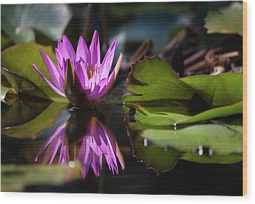 Wood Print featuring the photograph Fuchsia Dreams by Suzanne Gaff