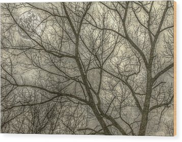 Full Moon In Spring Trees Yellow Wood Print by Randy Steele