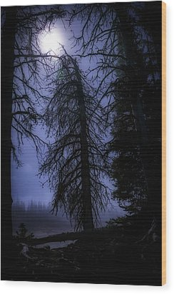 Full Moon In The Woods Wood Print by Cat Connor