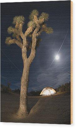 Full Moon Rising Over A Joshua Tree Wood Print by Rich Reid