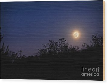 Full Moon Rising Over Trees Wood Print by Sharon Dominick