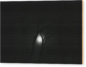 Wood Print featuring the photograph Full Moon Through Trees by Marilyn Hunt