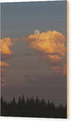 Full Moonrise Over Tree Silhouette Wood Print by David Gn