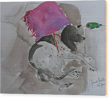 Fulmi And Pink Pillow Wood Print by Janet Butler