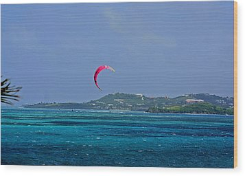 Fun In St. Croix Wood Print by Martin Morehead