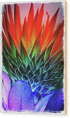 Funky Protea Wood Print