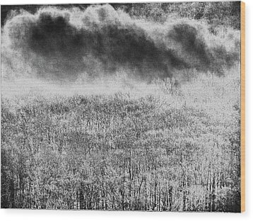 Wood Print featuring the photograph Fury by Steven Huszar