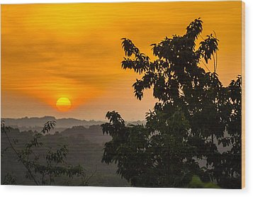Gainesville Sunrise Wood Print by Michael Sussman