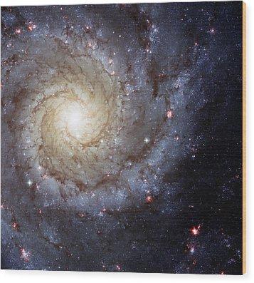 Galaxy Swirl Wood Print by Jennifer Rondinelli Reilly - Fine Art Photography