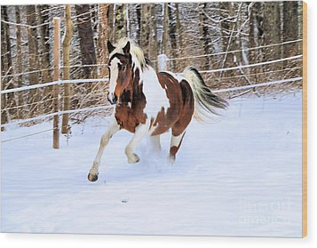 Galloping In The Snow Wood Print by Elizabeth Dow