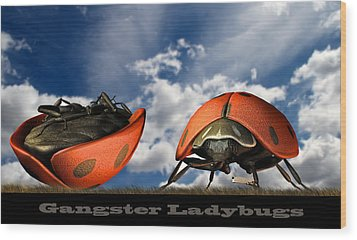 Gangster Ladybugs Nature Gone Mad Wood Print by Bob Orsillo